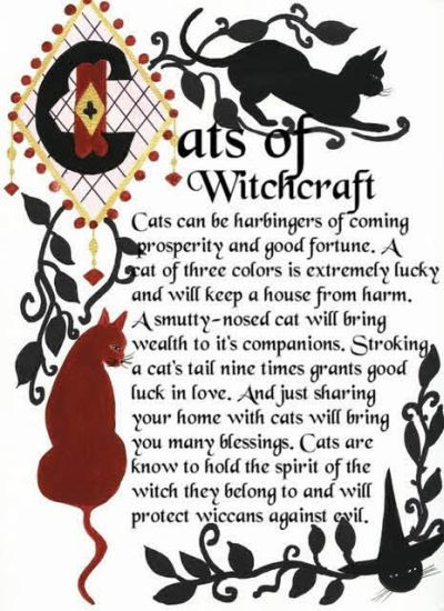 Witchy Cat Graphics & Comments